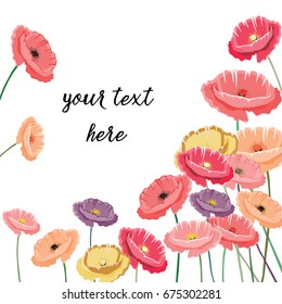 Vector illustration of colorful poppies in a corner. Place for your text. Vector illustration on white background