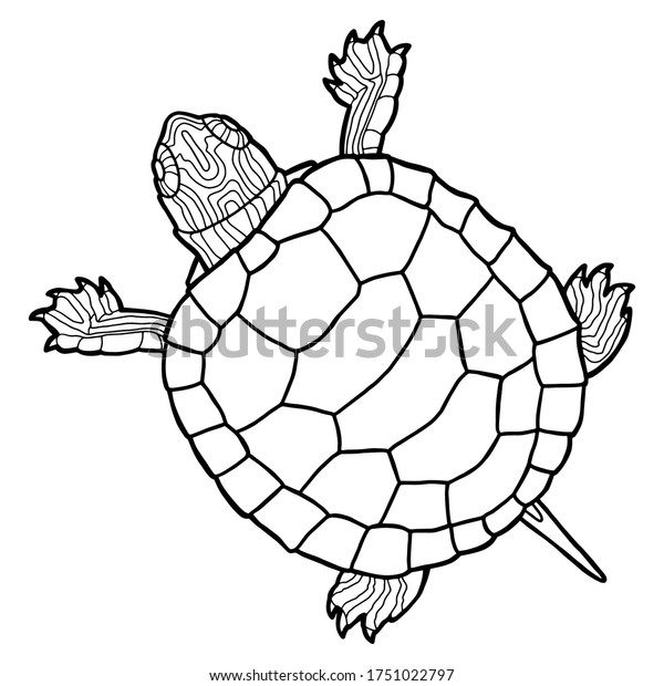 - Vector Illustration Coloring Book Realistic Design Stock Vector (Royalty  Free) 1751022797