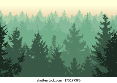 Vector illustration of Coniferous Forest.