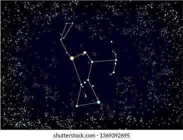 Imágenes, fotos de stock y vectores sobre Betelgeuse