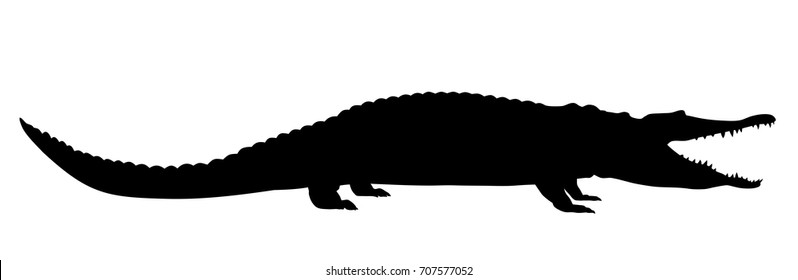 Vector illustration of crocodile side view silhouette