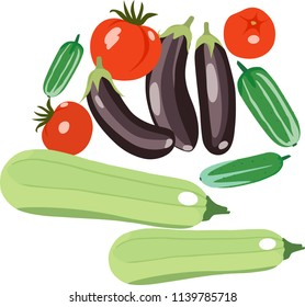 Vector illustration of the crop. Icons of tomatoes, eggplant and cucumbers isolated flat