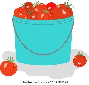 Vector illustration of the crop. Tomato bucket icon flat insulated