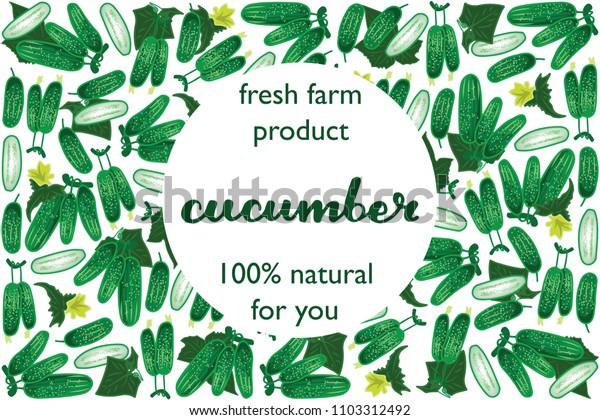 vector illustration of cucumber and leaf design with lettering cucumber background white and vegetable and text fresh farm product 100% natural for you EPS10