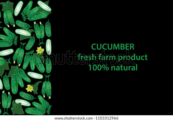 vector illustration of cucumber and leaf design background black and vegetable and text fresh farm product 100% natural EPS10