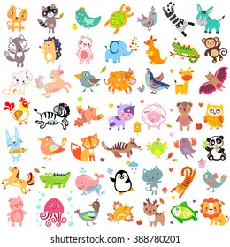 Vector illustration of cute animals and birds: Yak, quail, giraffe, cow, sheep, bear, owl, whale, panda, x-ray fish, chicken, quail, iguana, jellyfish, unicorn, numbat. Cute animals set. Cute animals