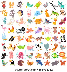 Vector illustration of cute animals and birds set: toucan, rhinoceros, turkey, wolf, pelican, fox, hedgehog, whale, unicorn, bull, sea horse, lion, penguin, raccoon, cat
