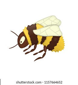 Vector illustration of cute bumblebee isolated on white background. Colored picture of insect in cartoon style. Watercolor effect