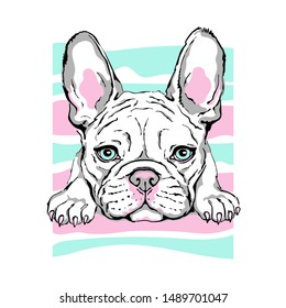 Vector illustration with cute french bulldog in bright colors. cartoon funny dog. Drawn puppy. Can be used as a print for clothes.