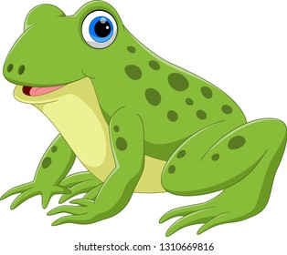 Vector illustration of cute frog cartoon
