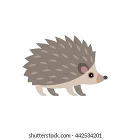 Vector illustration of cute hedgehog isolated on transparent background.