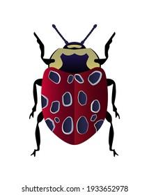 Vector illustration of a cute ladybird. Symmetrical vector beetle.