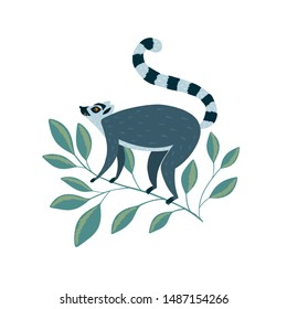 Vector illustration with  cute lemur on the branch vector illustration