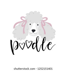 Vector illustration with cute poodle and text Poodle.