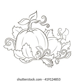 Vector illustration. Cute pumpkin with leaves and curls. sketch engraving