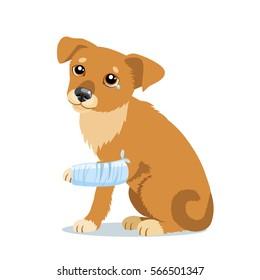 Vector Illustration Of Cute Sad Dog Or Puppy. Sick Dog With Splinting Leg. Veterinary Theme.