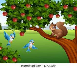 vector illustration of Cute squirrel on the apple tree