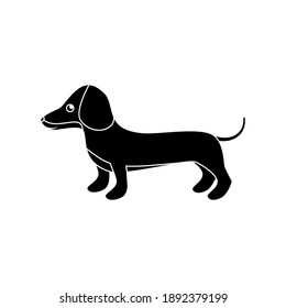 Vector illustration of dachshund for print and web design on a white background