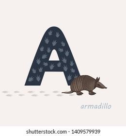 Vector illustration. Dark blue letter A with armadillo s footprints, a cartoon armadillo. Animal alphabet.