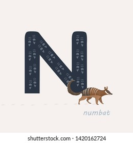 Vector illustration. Dark blue letter N with numbat's footprints, a cartoon numbat. Animal alphabet.