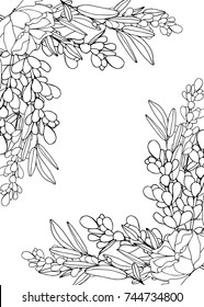 Vector illustration decorative frame. Doodle flower pattern black and white isolated on white background. Coloring page design with  flowers and space for text.