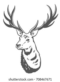 Vector illustration. Deer.