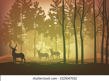 Vector illustration deer herd in the forest walking in the evening in the sunset sunlight among the trees silhouettes autumn