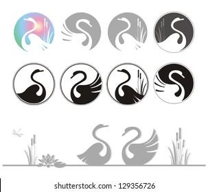 vector illustration of design swan