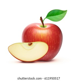 Vector illustration of detailed big shiny red apple