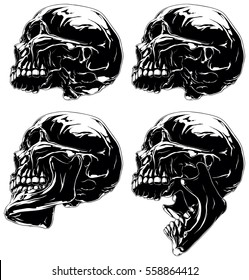 A vector illustration of Detailed graphic black and white skull in profile projection set.