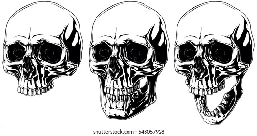 A vector illustration of Detailed scary graphic human skull with black eyes set