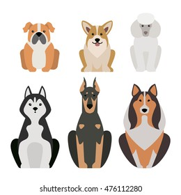 Vector illustration of different dogs breed isolated on white background