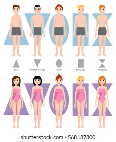 Vector illustration of different people body shape types. Sport or medical infographic solid body structure illustration. Male and female woman and man in underwear