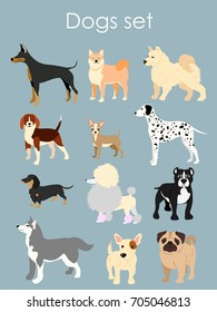 Vector illustration of different type of cartoon dogs. Dogs set in cartoon flat style on light blue background.