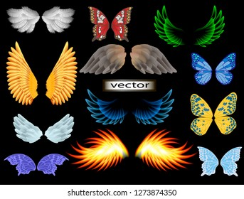 Vector illustration of different wings, angel and fairy, eagle and butterfly fire wings and cool big set