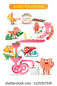 Vector illustration of digestive system. Comic scheme with personalizated and colorful mouth, gut, kidney, pancreas, bladder and liver. Diagram with ascending, transverse, descending and sigmoid colon