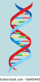 Vector illustration.  DNA