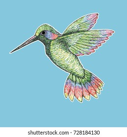 A vector illustration of a drawing of a  colorful flying hummingbird