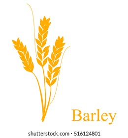 Vector illustration ear of barley isolated on white background. Farm field. Cereal. Agricultural symbol, icon