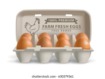 vector illustration eggs in carton on white background