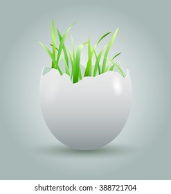 Vector illustration eggshell with growing grass