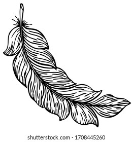 vector illustration, elegant feather in doodle style in black, logo symbol for design, print for coloring, print on t-shirt, cup, isolate on a white background