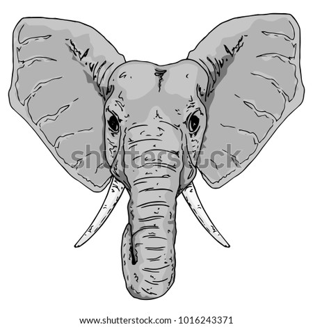 Vector Illustration Elephant Cute Elephant Symbol Stock Vector