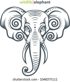 Vector illustration, elephant head for animal wildlife symbol