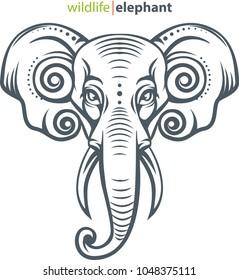 Vector illustration, elephant head for animal wildlife symbol