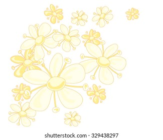 a vector illustration in eps 8 format of a stylized elderflower design in pale yellow colors on a white background