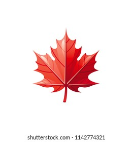 Vector illustration eps10 isolated on white background. Realistic autumn nature symbol, 3d fall holiday concept. Tree leaf red maple cartoon fedtive cute icon. Retro woodland falling leaves flat sign