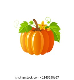 Vector illustration eps10 isolated on white background. Realistic autumn nature symbol, 3d fall holiday concept. Ripe orange pumpkin vegetable, harvest festival cartoon cute icon. Retro flat sign