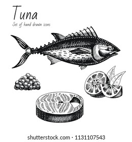 Vector illustration eps10 isolated white background. Hand drawn retro icon set, vintage ink engraving art. Line drawing, red fish caviar, lemon steak fillet. Tuna restaurant menu seafood, food symbol