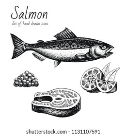 Vector illustration eps10 isolated white background. Hand drawn retro icon set, vintage ink engraving art. Line drawing, red fish caviar lemon steak fillet. Salmon restaurant menu seafood, food symbol
